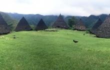 Flores : Point de vue sur les rizières et village de Wae rebo