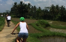 Mountainbiking from Batur to Ubud